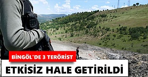 Bingöl'de 3 terörist etkisiz hale getirildi
